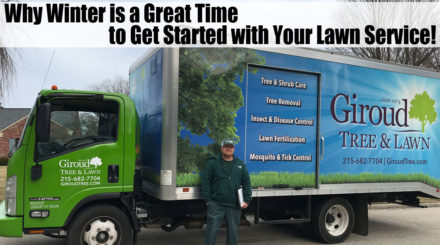 Lawn Service Free Evaluation Inspection Winter